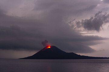 krakatau_i2028.jpg (Photo: Tom Pfeiffer)