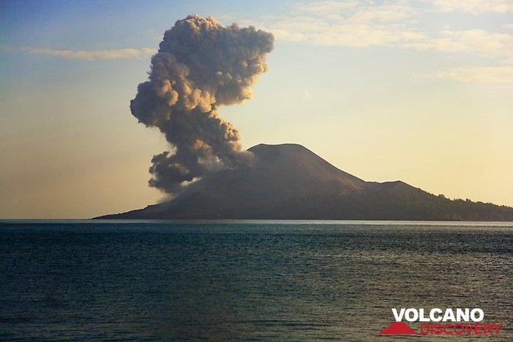 Small ash eruption  (Photo: Tom Pfeiffer)