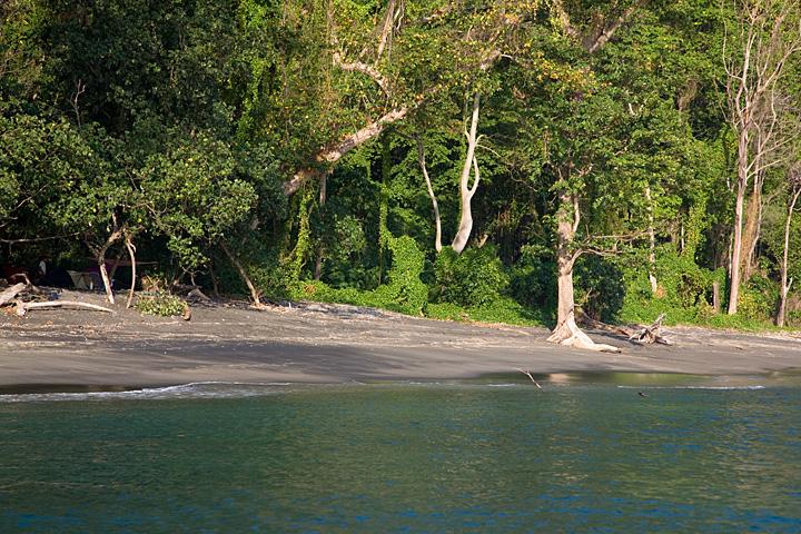 Rakata beach where our camp is set up (Photo: Tom Pfeiffer)