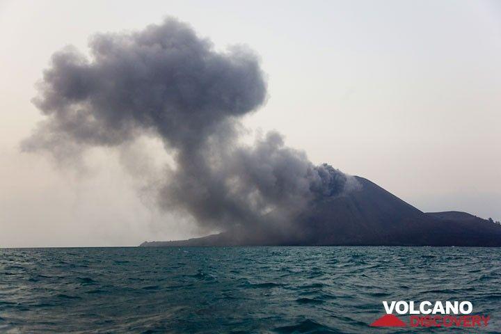 Small ash puff from anak Krakatau (Photo: Tom Pfeiffer)