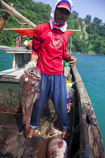krakatau_i3018.jpg (Photo: Tom Pfeiffer)