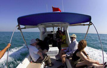 krakatau_i54056.jpg (Photo: Tom Pfeiffer)