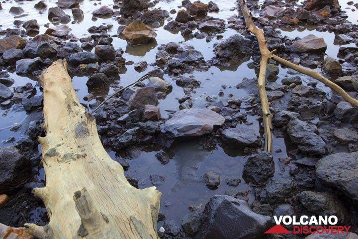 Low tide. (Photo: Tom Pfeiffer)