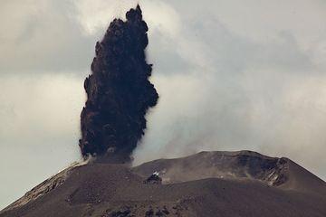 krakatau_i37028.jpg (Photo: Tom Pfeiffer)