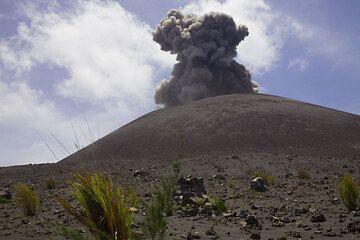 krakatau_e32534.jpg (Photo: Tom Pfeiffer)