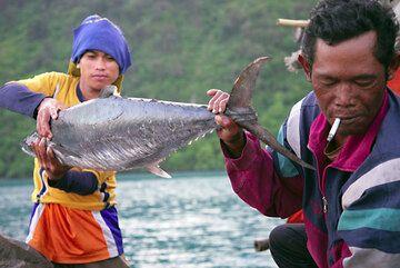 krakatau_e32979.jpg (Photo: Tom Pfeiffer)