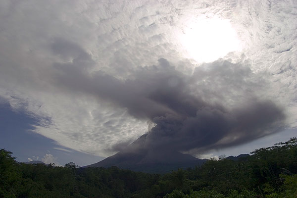 Ash cloud rising from the slope of the volcano after the pyroclastic flow has descended. (Photo: Tom Pfeiffer)
