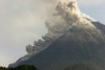 View of the steep SW slope of Merapi volcano with a pyroclastic flow descending from the collapsing lava dome. (Photo: Tom Pfeiffer)