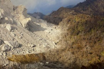 The limit of pyroclastic deposits at the southern base of the dome is marked by a narrow area of partly burned and ash covered vegetation. On some occasions, we could see blocks that had fallen from the dome ignite some wood in this area. (Photo: Tom Pfeiffer)