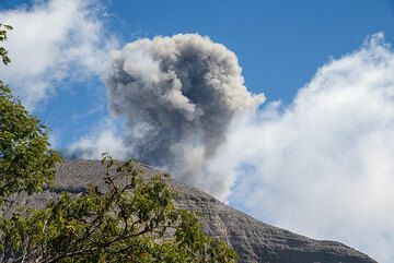 As we continue to climb, Raung continues to greet us with ash puffs. (Photo: Tom Pfeiffer)