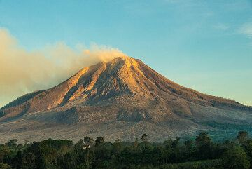 The golden early sunlight hits the summit of Sinabung with its lava dome. (Photo: Tom Pfeiffer)