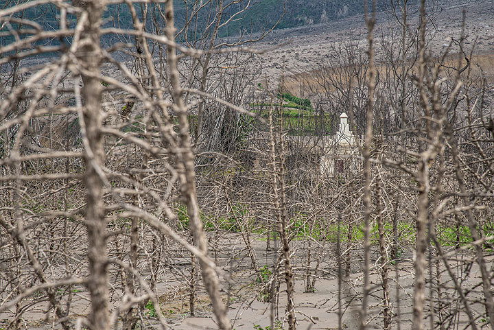 View through dead orange trees towards a grave that stands out iconically from the devastation zone at eh southern end of Sukameriah. (Photo: Tom Pfeiffer)