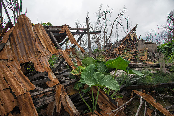 Structures and roofs with corrugated sheet metal had little chance to survive the pyroclastic flow surge. (Photo: Tom Pfeiffer)