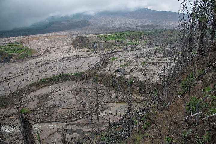 View into where once Sukameriah village was located, around a valley with lush fields inside and on both banks. Part of the pyroclastic flows traveled through this canyon and covered it with meter-thick chaotic deposits. (Photo: Tom Pfeiffer)