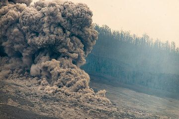 As the flow front stagnates, the fine ash starts to separate and rise as ash plume. (Photo: Tom Pfeiffer)