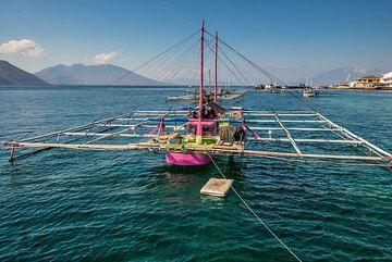 Traditional fishing boat (Photo: Tom Pfeiffer)