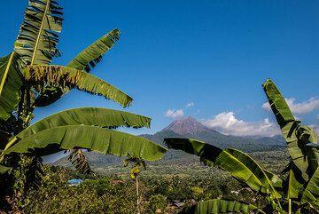 "Lewotobi Lakilaki (""husband"") volcano in eastern Flores seen on the way to Larantuka. (Photo: Tom Pfeiffer)"
