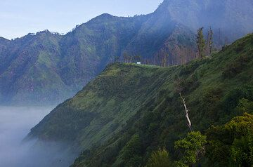 The steep walls of the huge Tengger caldera (Photo: Tom Pfeiffer)