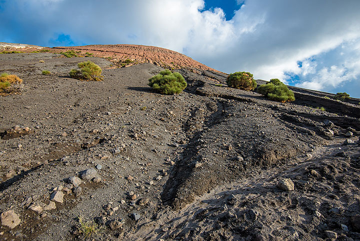 The 1888 black sand ash deposit on the slope of Fossa volcano, Vulcano Island (Photo: Tom Pfeiffer)