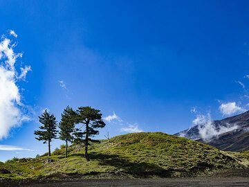 A green hill on Etna. (Photo: Tobias Schorr)