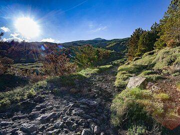 "One of the ""luxury"" hiking paths around Etna volcano. (Photo: Tobias Schorr)"