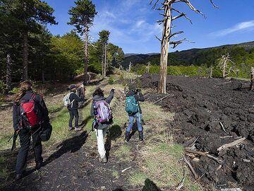 The VolcanoAdventures group near a young lava flow of Etna volcano. (Photo: Tobias Schorr)