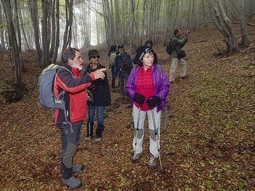 Franco explains the forest life to the guest. (Photo: Tobias Schorr)