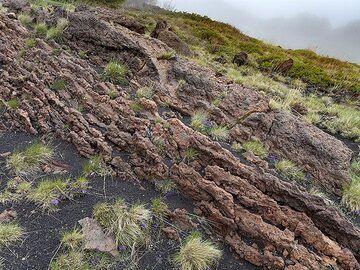 Old lavaflow at Etna volcano. (Photo: Tobias Schorr)