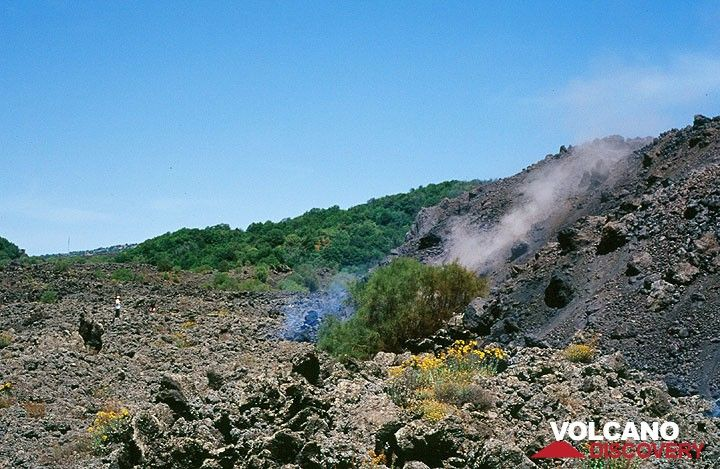 The aa lava flow front. (Photo: Tom Pfeiffer)