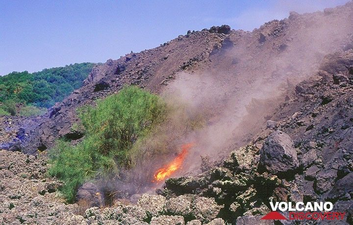 The 'a'a lava flow front, is still moving,- very slowly. Blocks are tumbling from its top, setting fire to isolated bushes of broom. (Photo: Tom Pfeiffer)