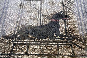 pompeii_e2498.jpg (Photo: Tom Pfeiffer)