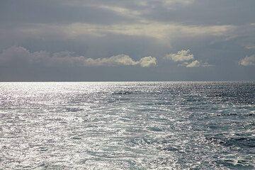 Light on the sea. (c)