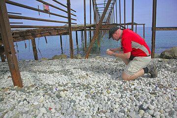 Daniel collecting pumice  (Photo: Tom Pfeiffer)