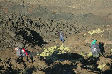 After about 30 minutes, we reach the spatter cones on the eruptive fissure from a spectacular fissure eruption in 1947. (Photo: Tom Pfeiffer)