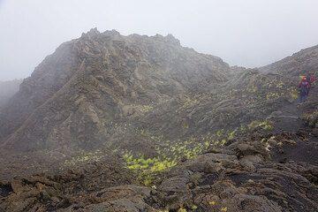 """La montagna dei cadaveri"" - ""the mountain of cadavers"", a rather morbid name for this large tumulus with strange, winding lava shapes. (Photo: Tom Pfeiffer)"