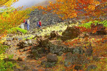 Autumn colors (Photo: Tom Pfeiffer)