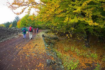 """We have reached the dirt road """"forestale"""" that goes around Etna at around 1500 m elevation.  (Photo: Tom Pfeiffer)"""
