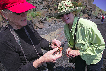 Biologist Linda explaining somehting about the small sea urchin (Photo: Tom Pfeiffer)
