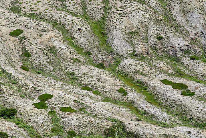 Erosion gullies at the outer slopes of the inner crater containing the Okama lake, Zao volcano, Japan (Photo: Tom Pfeiffer)