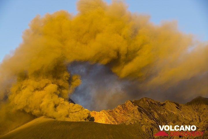 Golden morning light on Showa crater emitting an ash plume. (Photo: Tom Pfeiffer)