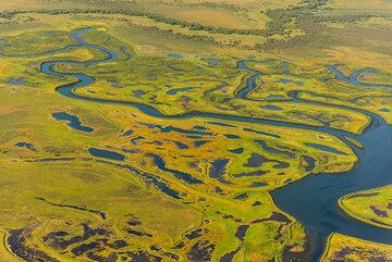 Meandering arms and swamps of the Avacha river. (Photo: Tom Pfeiffer)