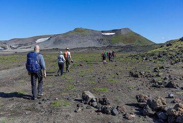 Starting the trail to Gorely volcano (Photo: Tom Pfeiffer)