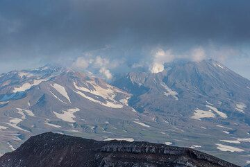 View towards Mutnovsky with its strong fumaroles. (Photo: Tom Pfeiffer)