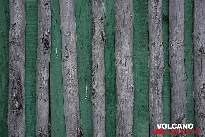 Green wood (Photo: Tom Pfeiffer)