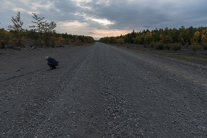 The long gravel road towards the north, though seemingly endless forests. (Photo: Tom Pfeiffer)