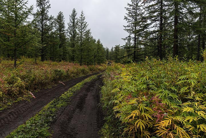 11 Sep: we're on our way towards the western flank of Tolbachik volcano. (Photo: Tom Pfeiffer)