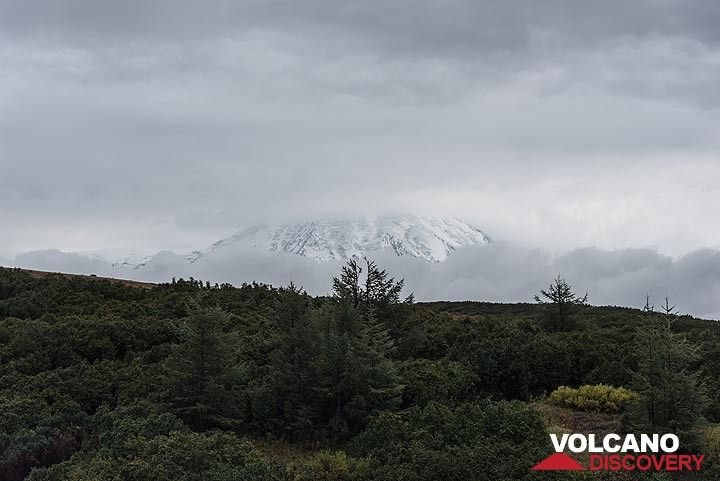 The massive northern flank of Tolbachik volcano briefly comes into sight from our position at Stolik hut. (Photo: Tom Pfeiffer)