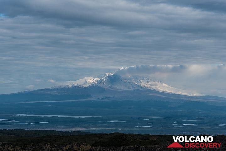 View back towards Sheveluch volcano emitting a steam plume. (Photo: Tom Pfeiffer)