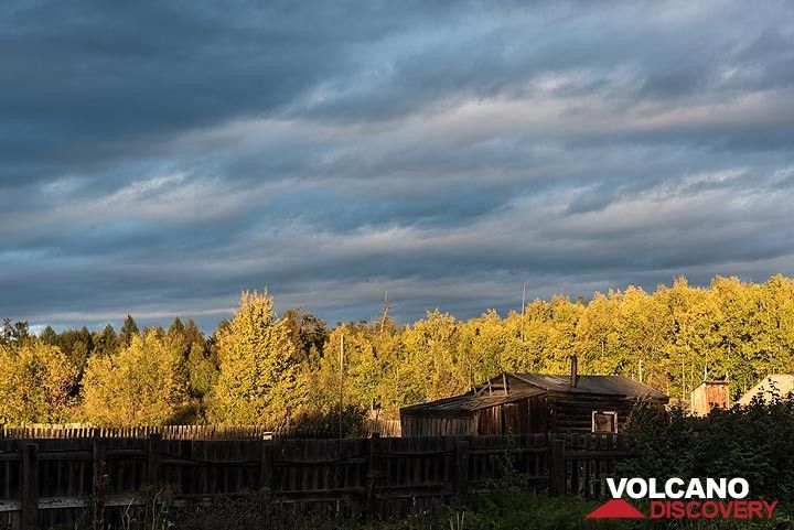 Shortly before sunset, the sun comes out from below a dense cloud deck, paining the forest yellow. (Photo: Tom Pfeiffer)