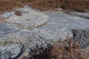Partially dried-up mud ponds. (Photo: Tom Pfeiffer)